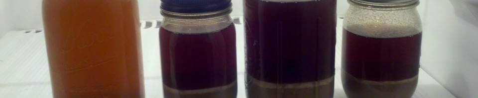 Jars of Yeast